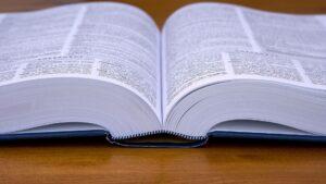 słownik Forex