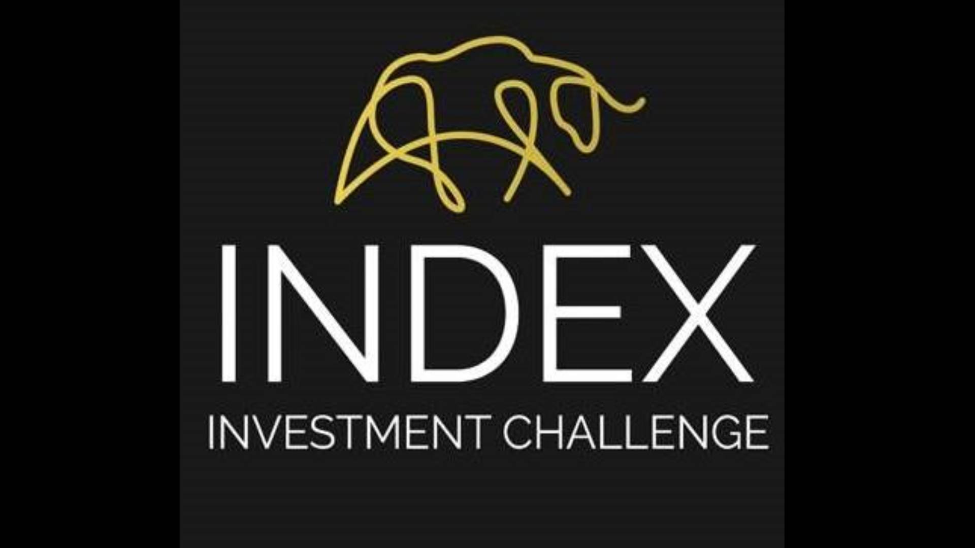 Index Investment Challenge